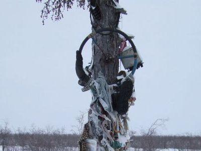Дерево Духов. Зырянка-Арылах.