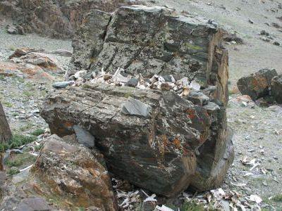 Жертвенный камень.
