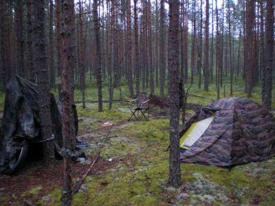 Где-то в лесу под Лугой.