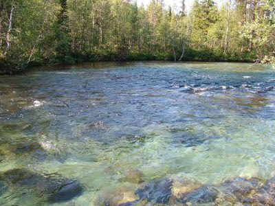 Горная речка впадающая в Гольцовое.